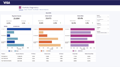 Visa Analytics Platform | Performance Insights | Visa